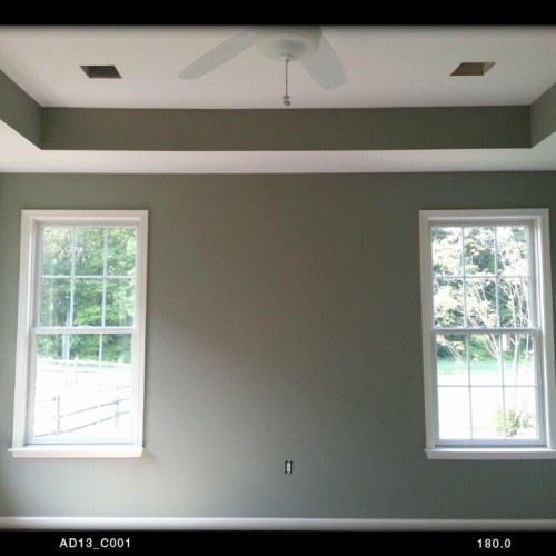 Just Add Paint, tray ceiling